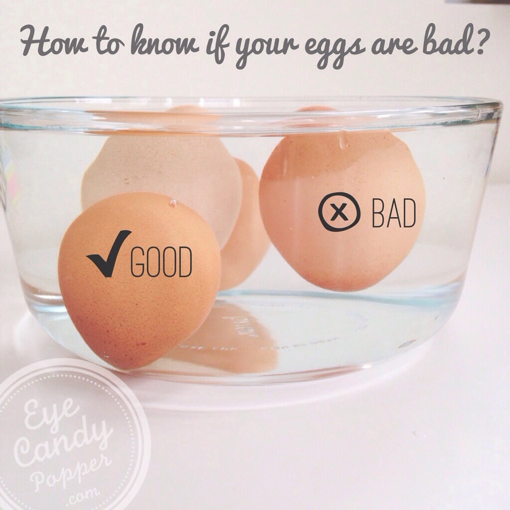 New Series! Easy Tips: How to tell if your eggs are bad ...