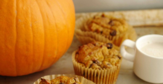 Wheatless Wednesday: Pumpkin and chocolate chip muffins (low-gluten, dairy-free, vegan option)