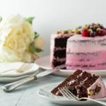 Two tone pink chocolate cake (spelt, dairy-free, no dye)