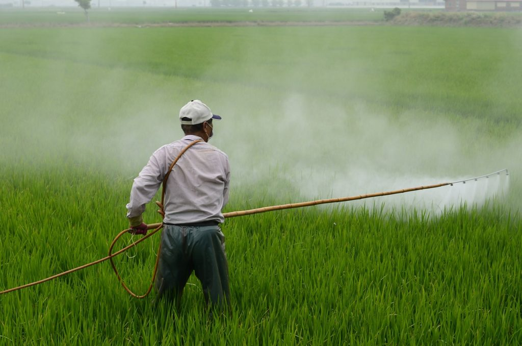 A worker wearing a mask who is spraying pesticides on crops